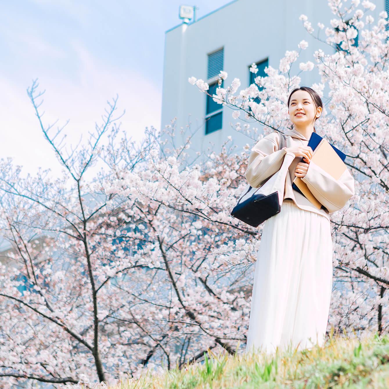 入学式に向かい、桜並木を歩く女性